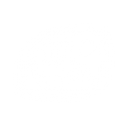 Coliseo Kids Park